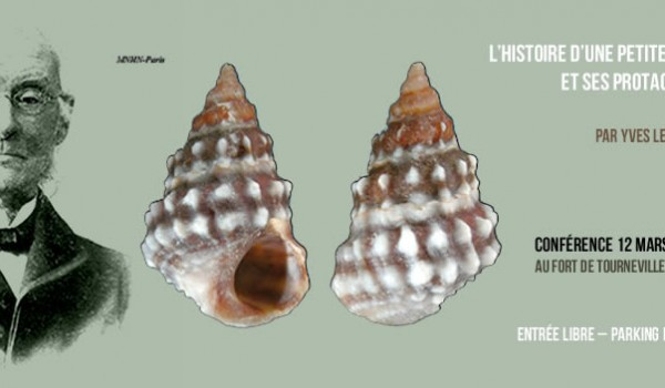coquille2